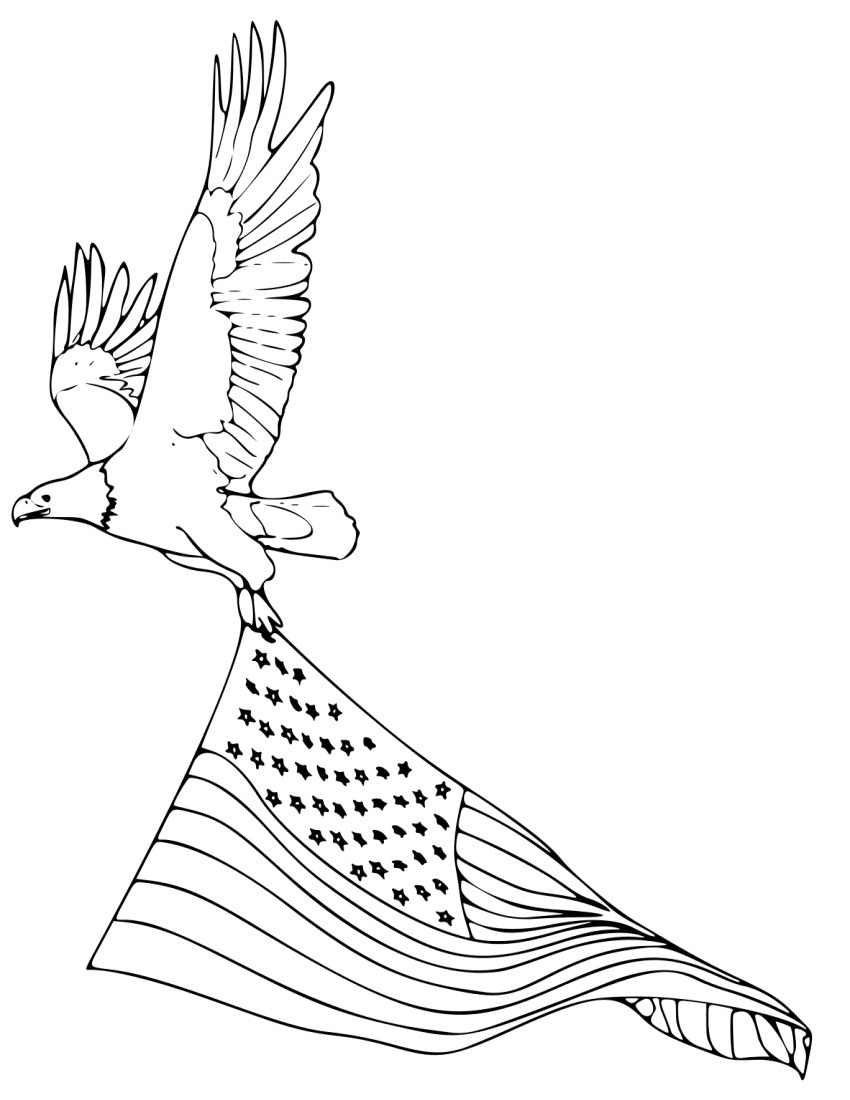 american bald eagle coloring pages - Bald Eagle Coloring Page