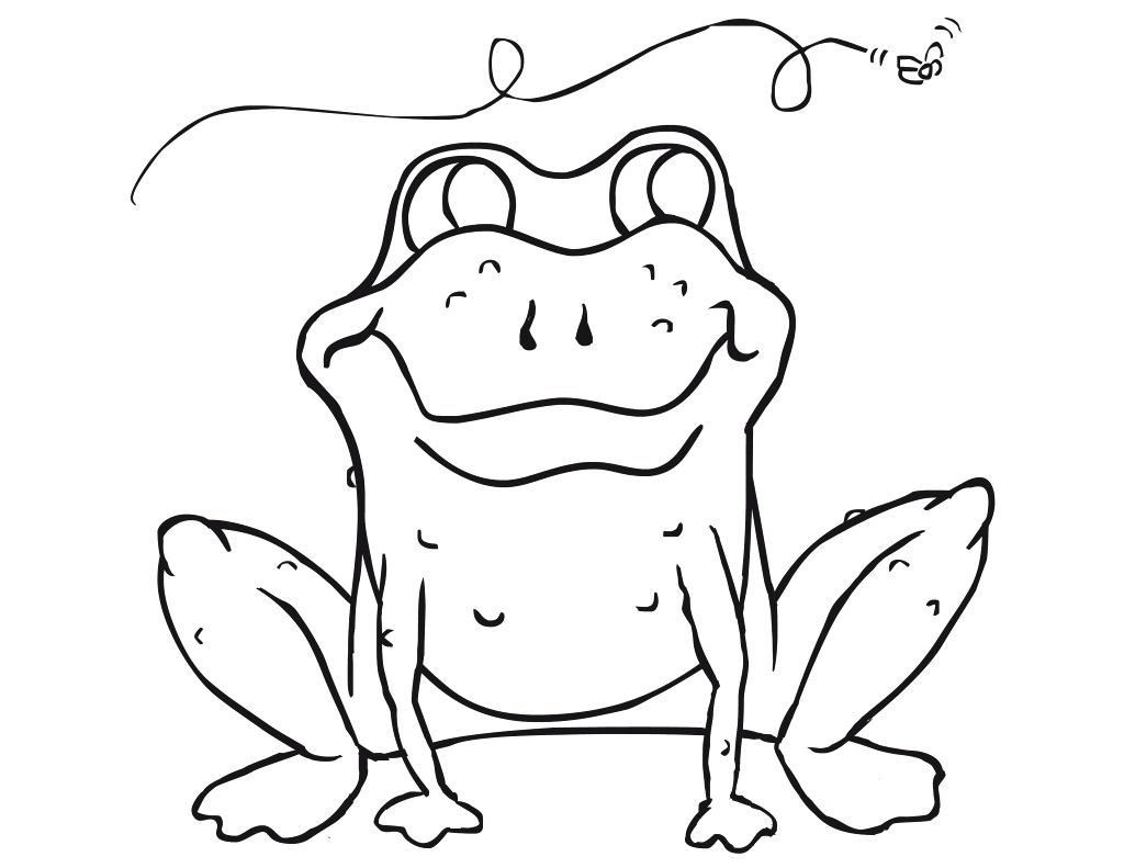 American Toad Coloring Page