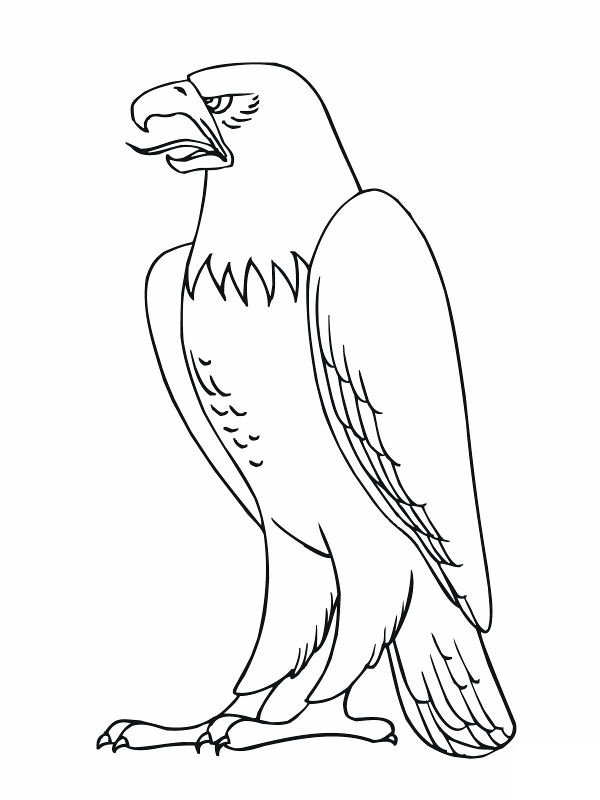 Free Worksheets leprechaun worksheets : Printable Bald Eagle Coloring Pages : Coloring Me