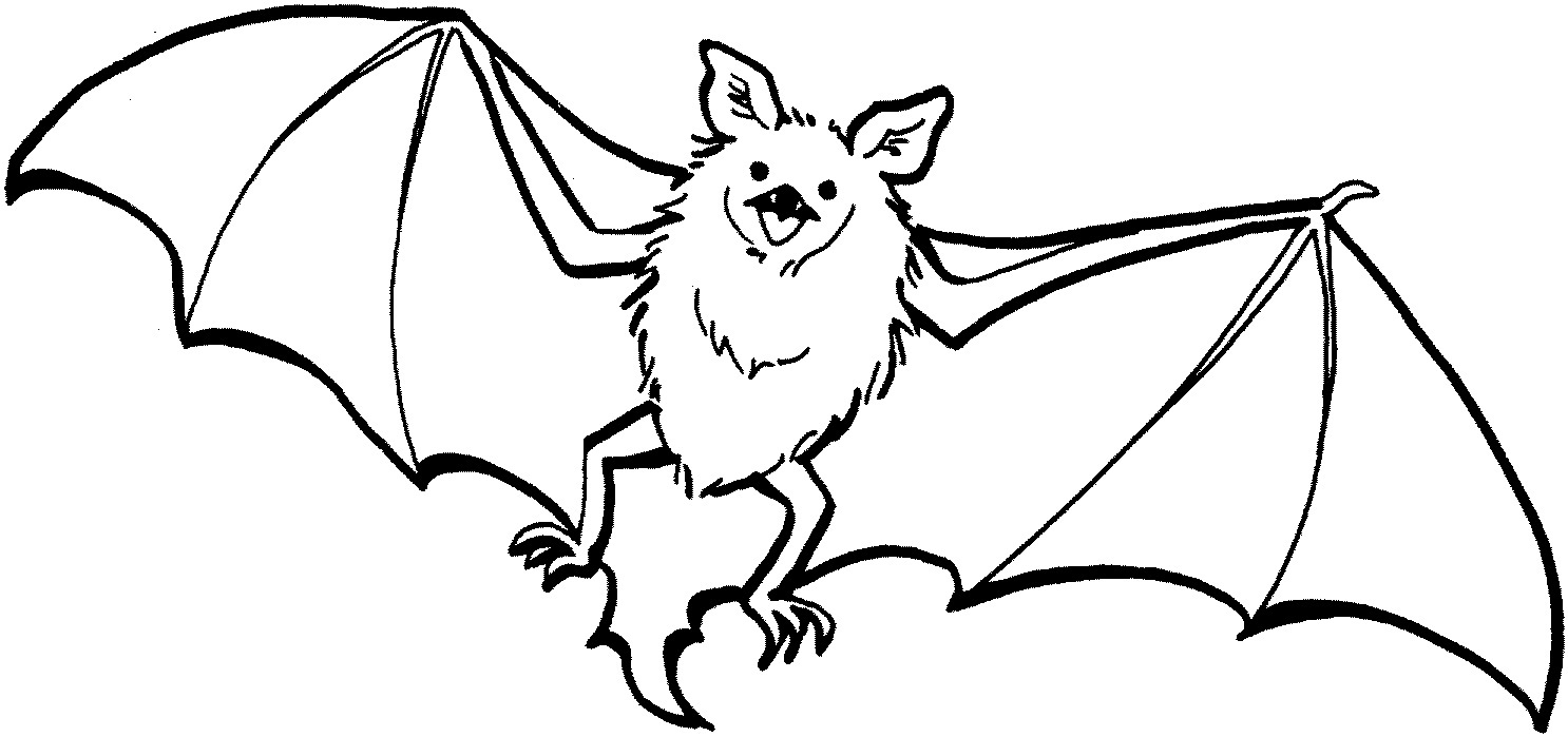 halloween bat coloring pages - photo #33