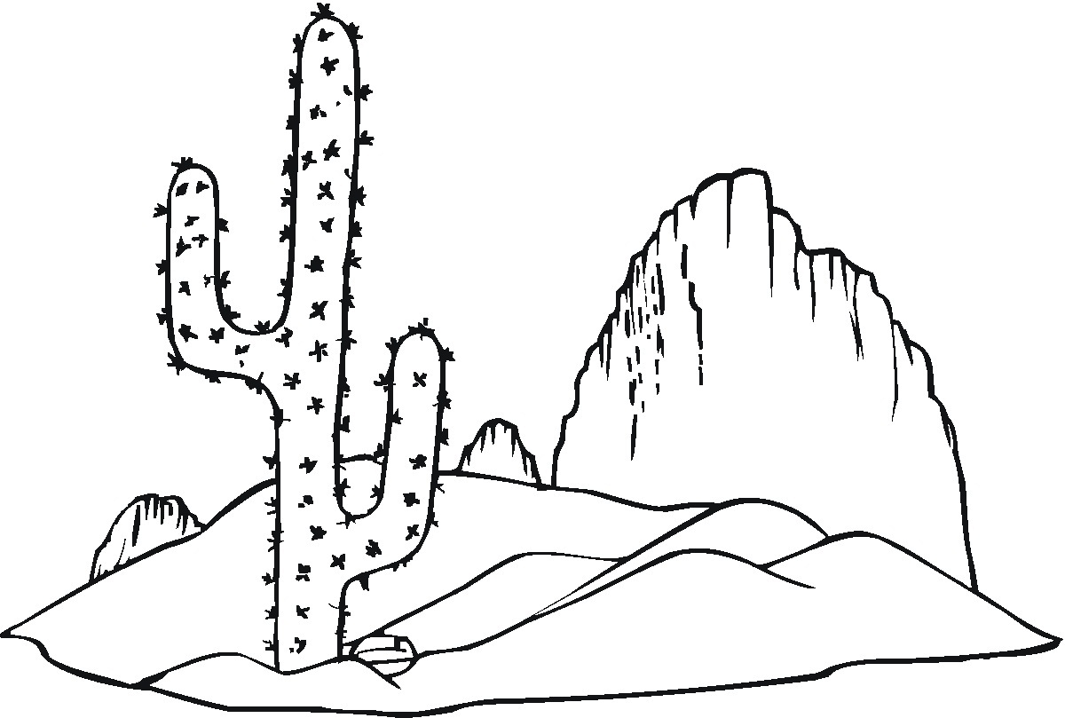 Stunning Desert Coloring Pages Gallery New Printable Coloring