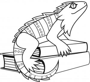 Free Iguana Coloring Page