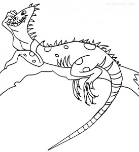 Free Iguana Coloring Pages