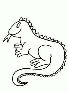 Free Iguana Coloring Pages Print