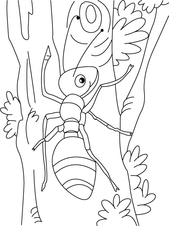 Cute Ant Coloring Pages. Silk Moth clipart transformation - Pencil ...
