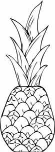 Free Printable Pineapple Coloring Page