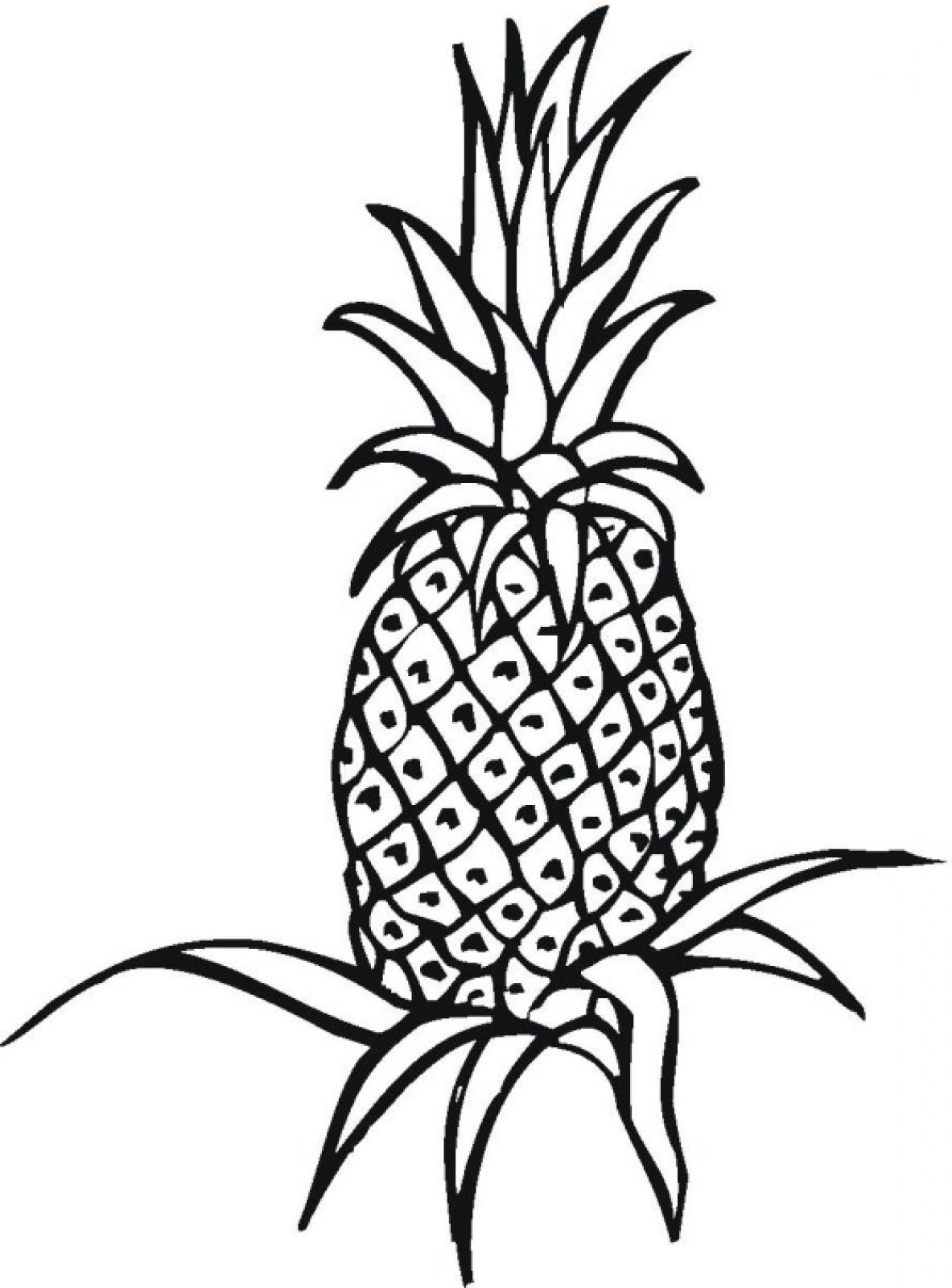 Printable Pineapple Coloring Page also Printable Pineapple Coloring ...