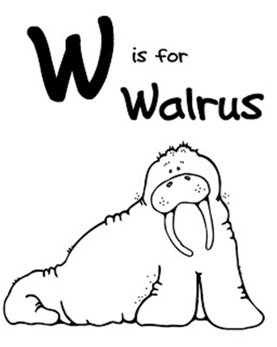 Printable Walrus Coloring Pages Coloringme Com