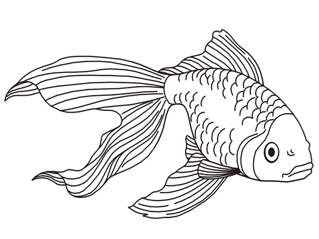 Printable Goldfish Coloring Pages
