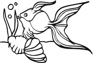 Goldfish Coloring Sheet