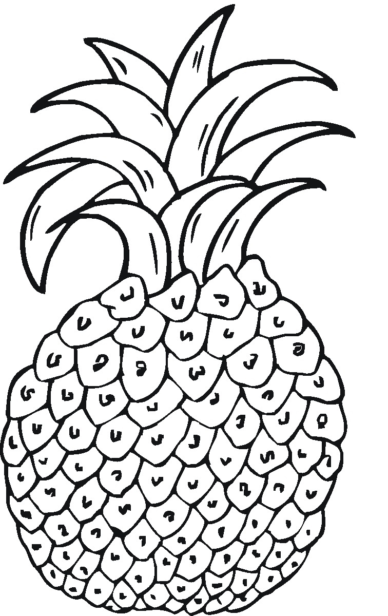 graphic regarding Printable Pineapple known as Printable Pineapple Coloring Webpages