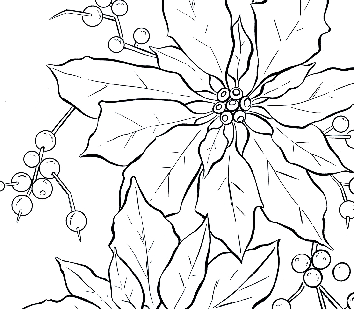 poinsettias coloring pages