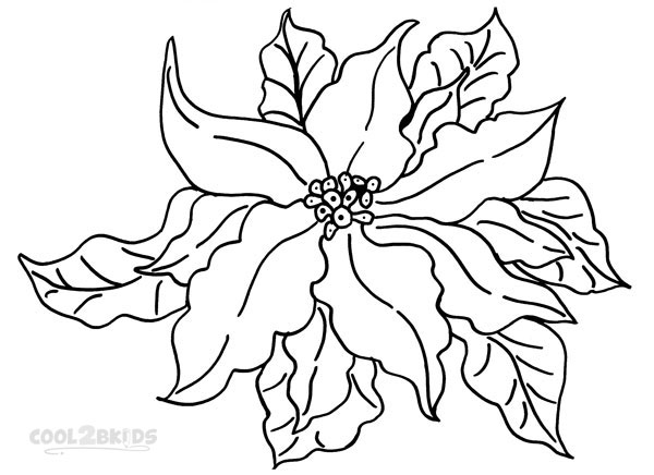 Poinsettia Leaves Coloring Pages