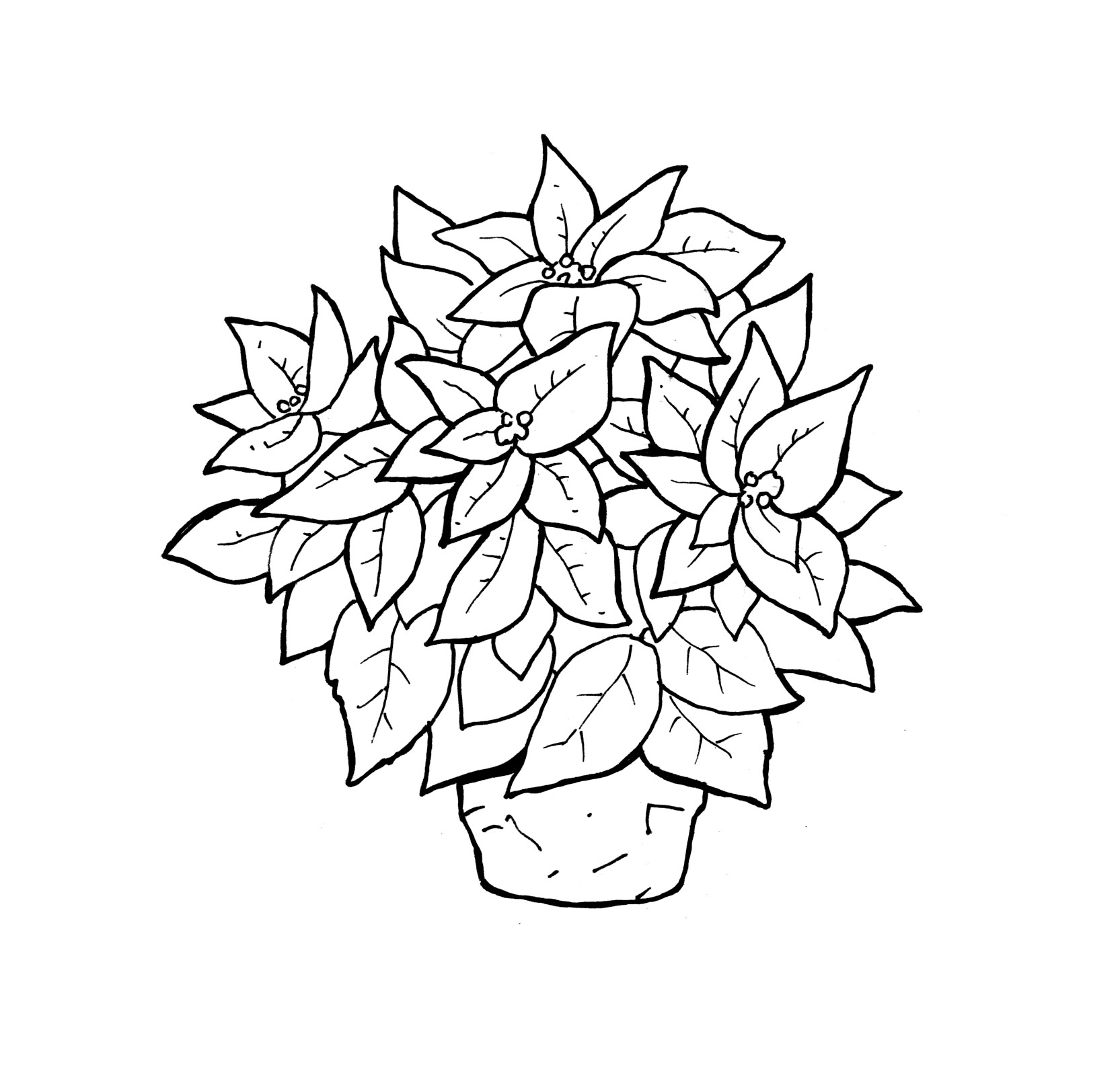 Coloring Pages Of Flowers In A Vase Image collections - Vases ...