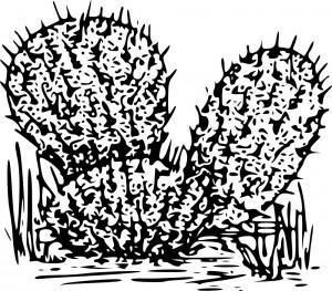 Preschool Cactus Coloring Page