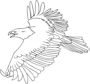 Printable Bald Eagle Coloring Sheets