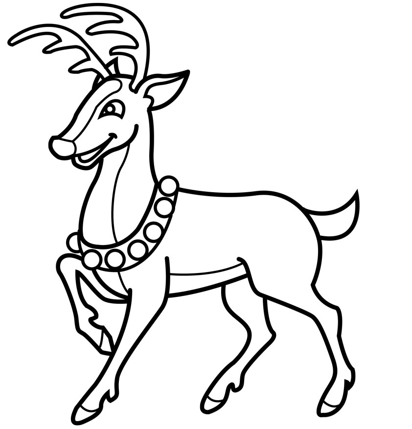 reindeer coloring sheets