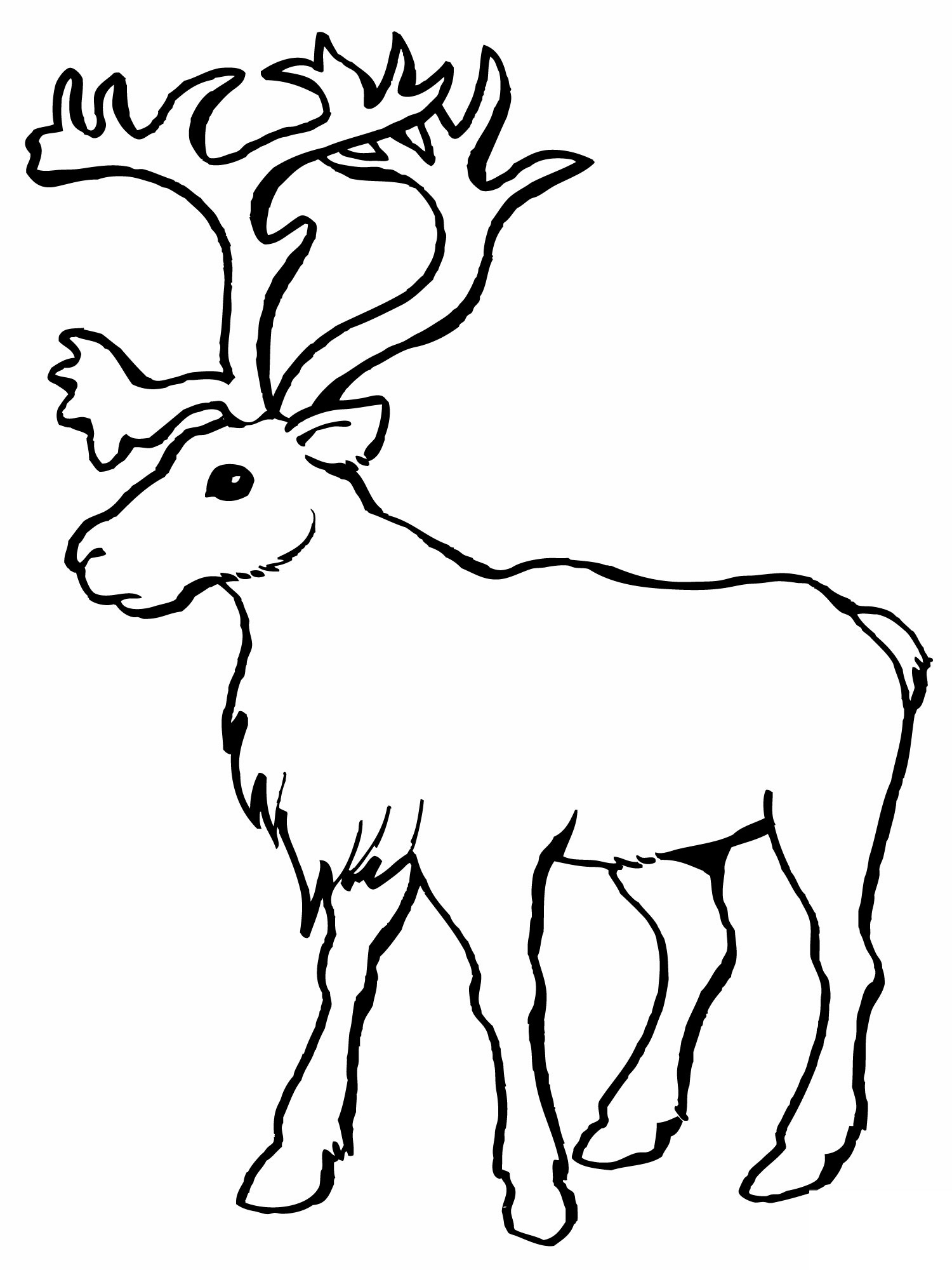 - Printable Reindeer Coloring Pages ColoringMe.com