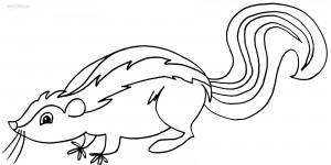 Skunk Coloring Page Free