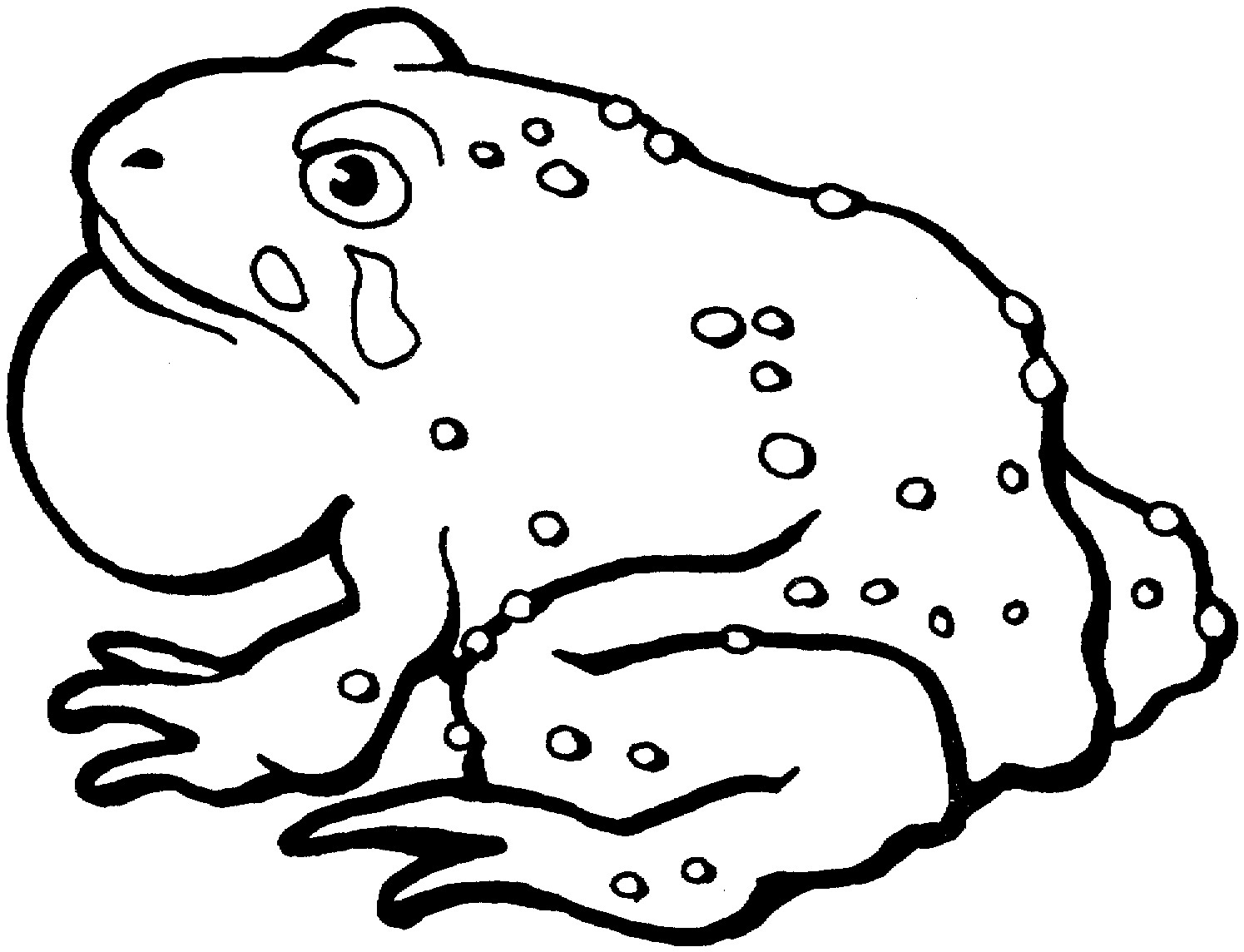 Printable Toad Coloring Pages Coloring Me Frog And Toad Coloring Pages