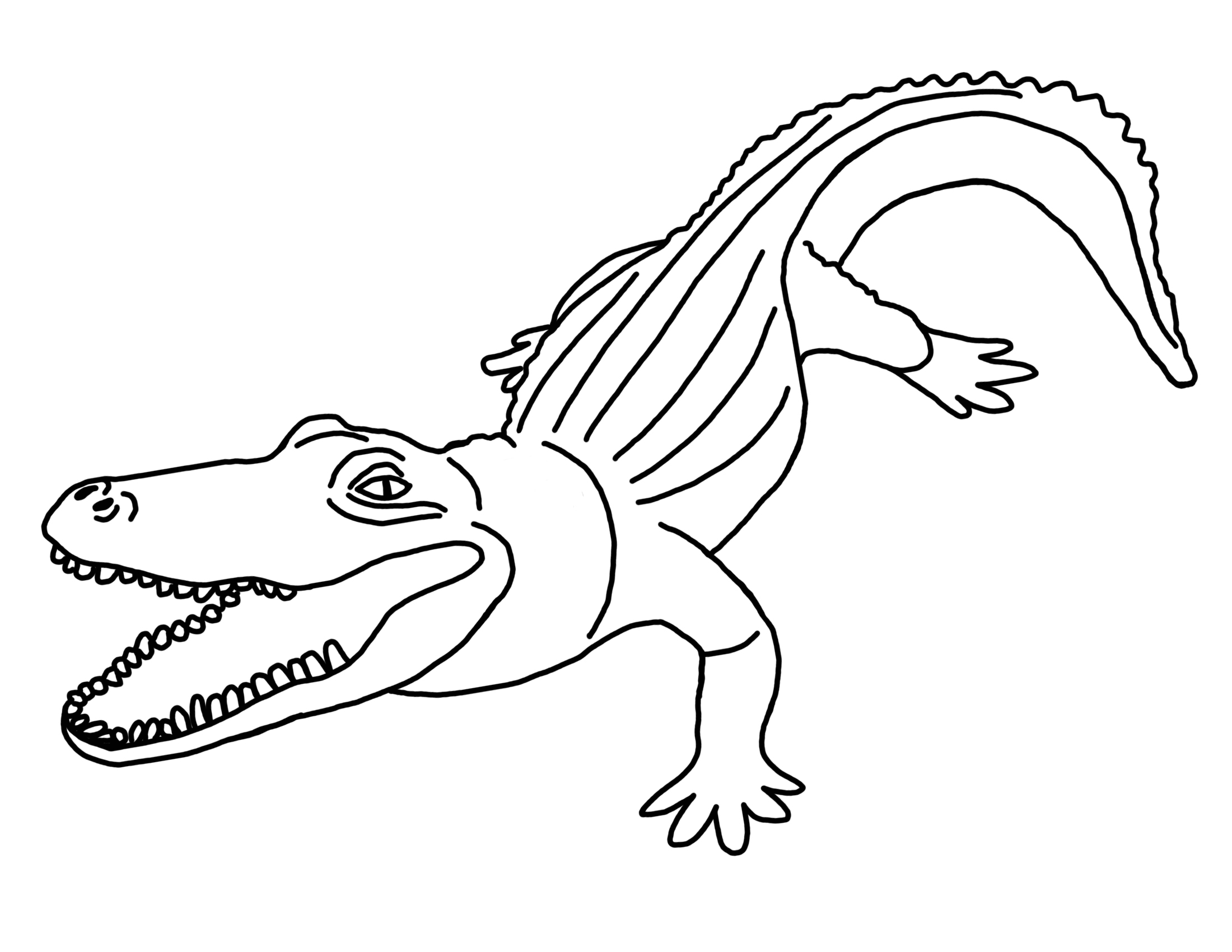 Baby Alligator And Python Coloring Coloring Pages Crocodile Coloring Pages To Print