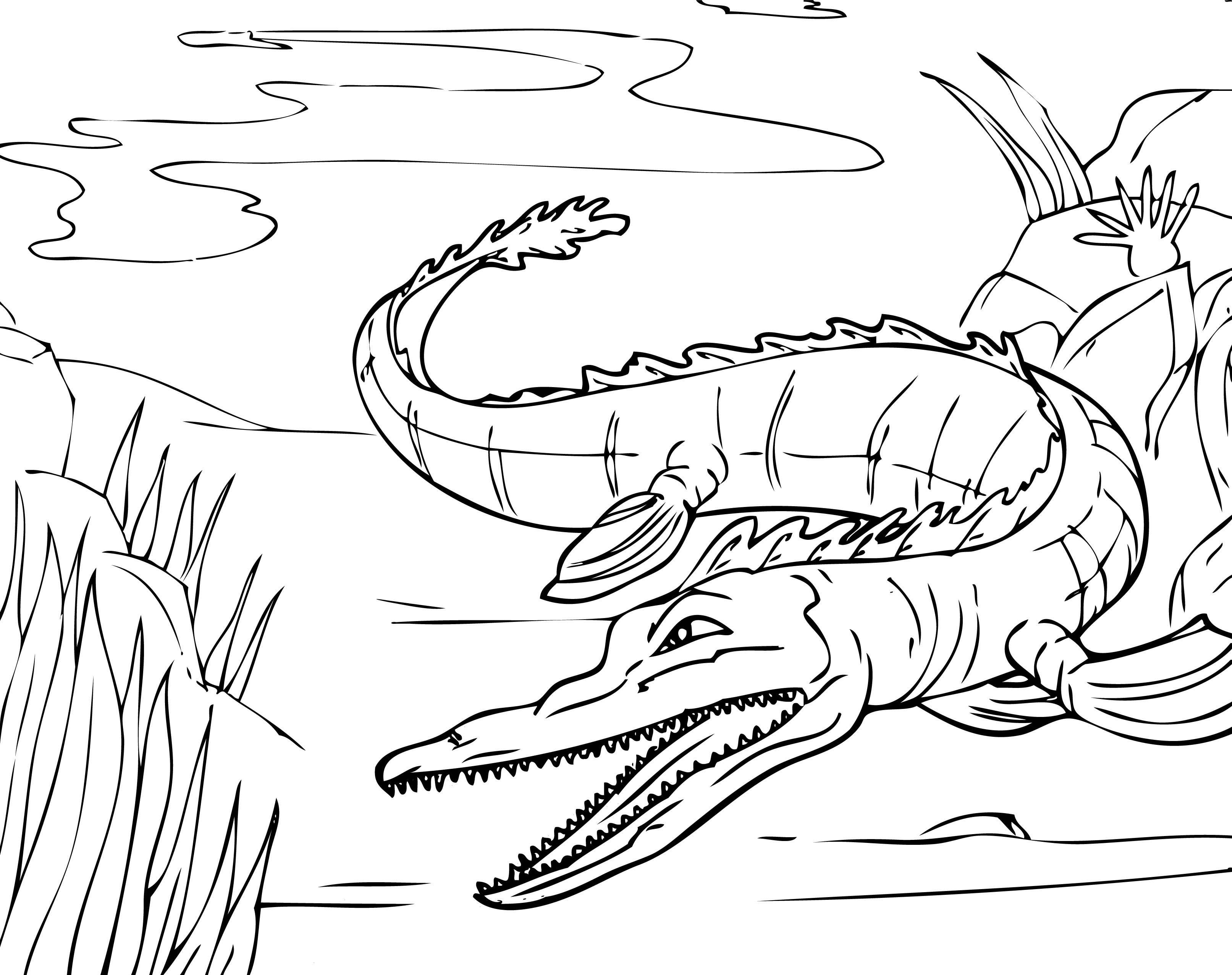 alligator coloring sheet