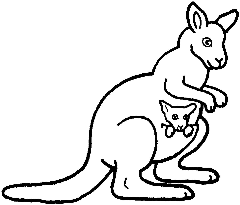 Printable Kangaroo Coloring Pages Me