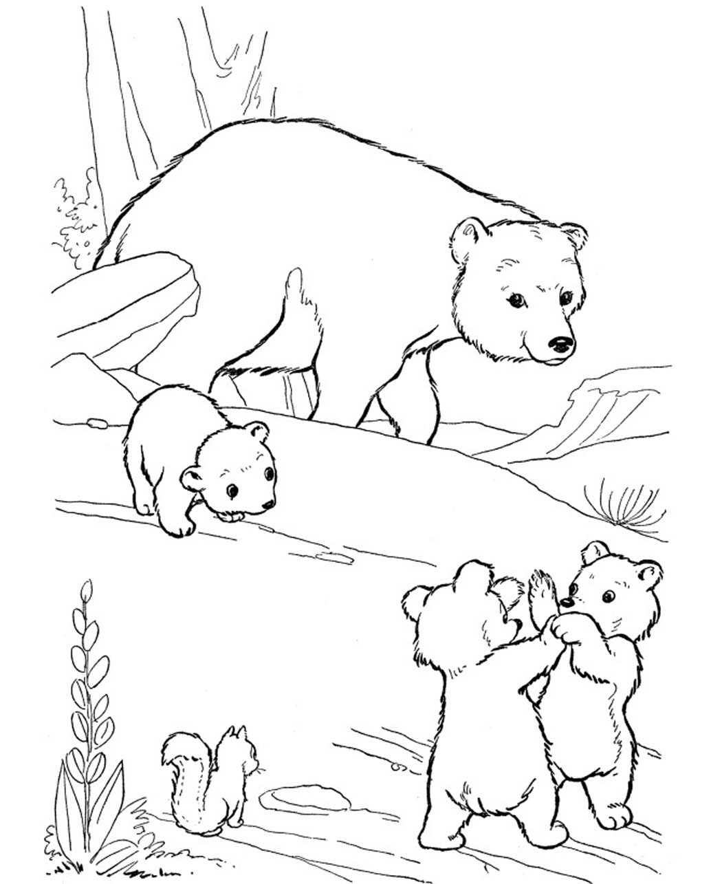 printable bear coloring pages coloring me