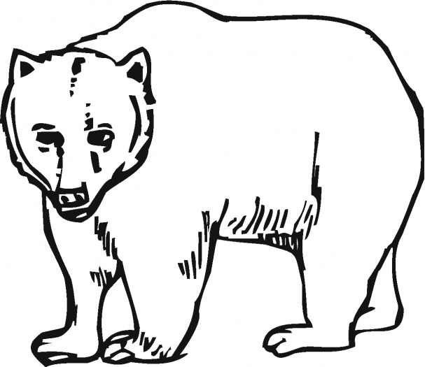 bear coloring pages to print - photo#32