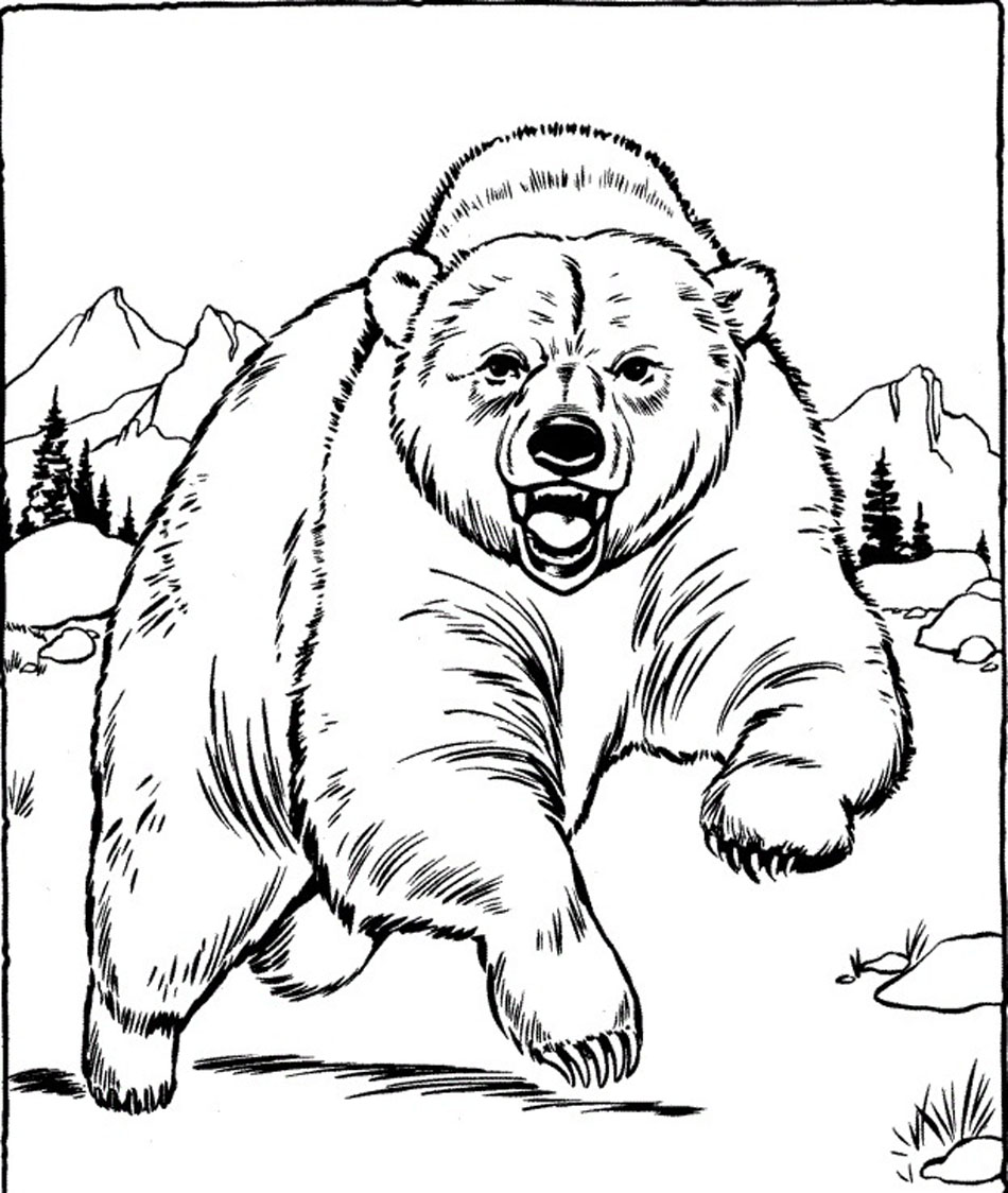 Build A Bear Coloring Pages To Print  Vosvetenet