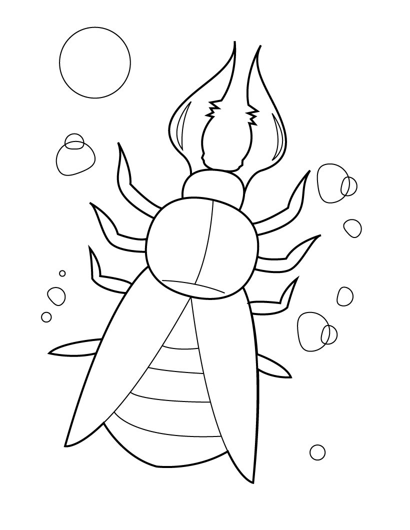 firefly coloring page eric carle blaze the very lonely colouring ...