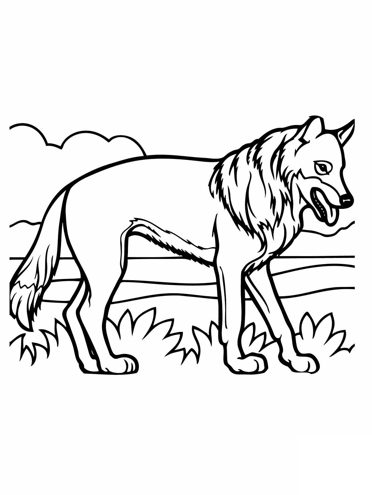 coyote pictures coloring pages - photo#26