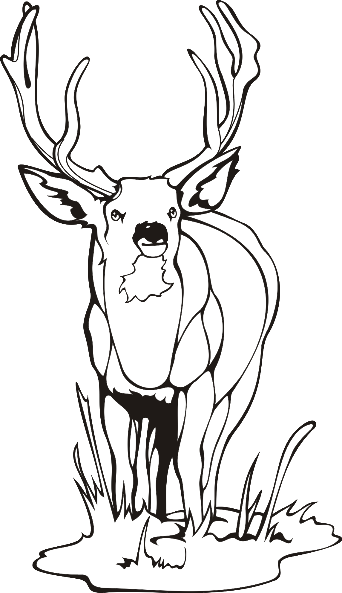 deer coloring pages printable