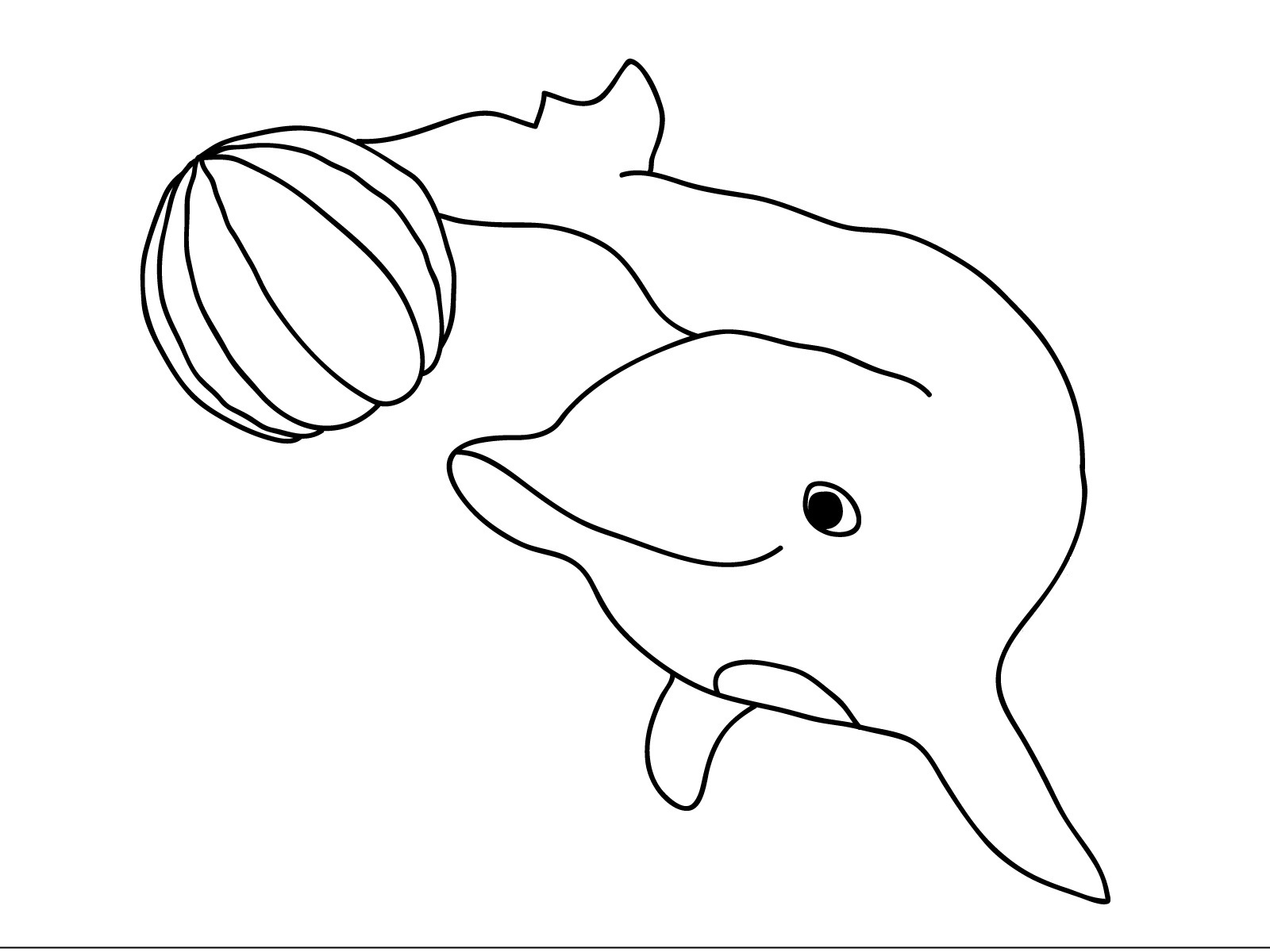 Free coloring pages dolphins - Dolphin Free Coloring Pages