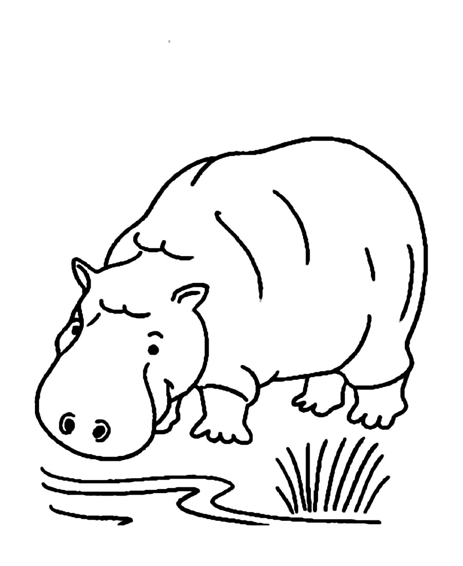 hippopotamus coloring pages to print - photo#13