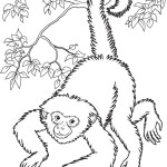 Printable Monkey Coloring Pages | Coloring Me