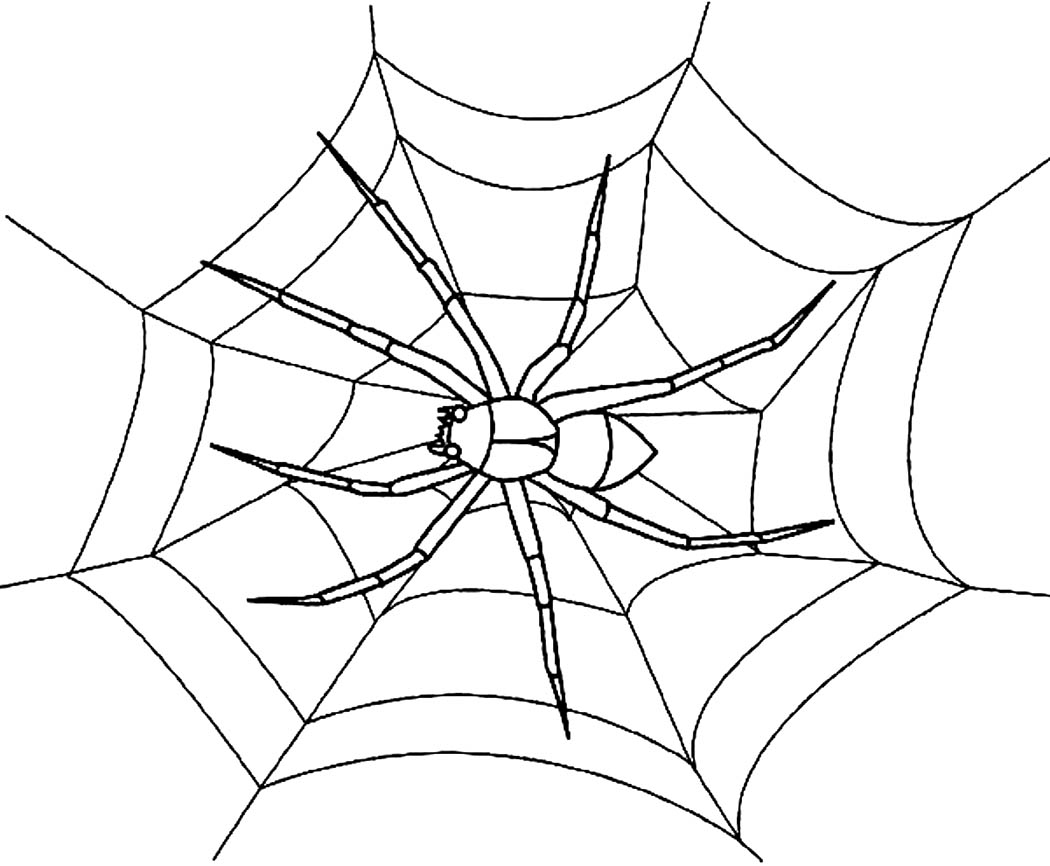 free spider web coloring pages - photo#10