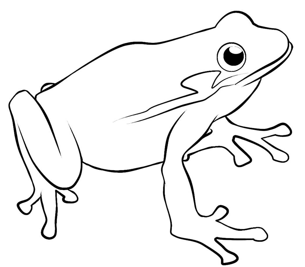 Printable Frog Coloring Pages | Coloring Me