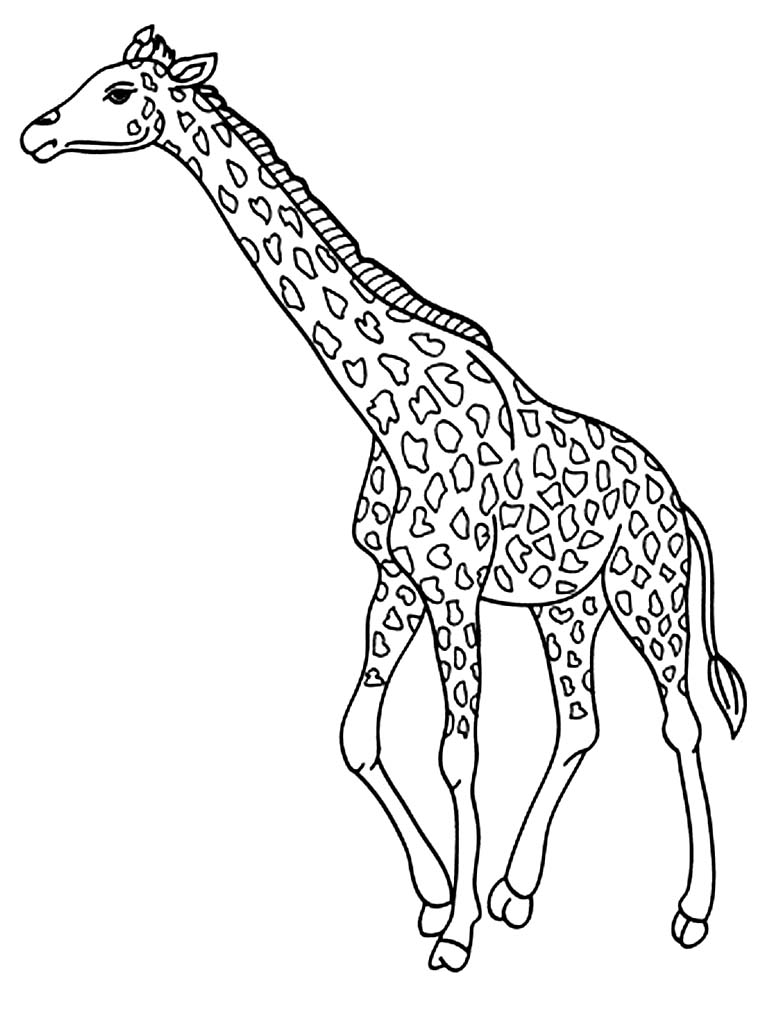 Printable Giraffe Coloring Pages Coloring Me Baby Giraffe Coloring Pages