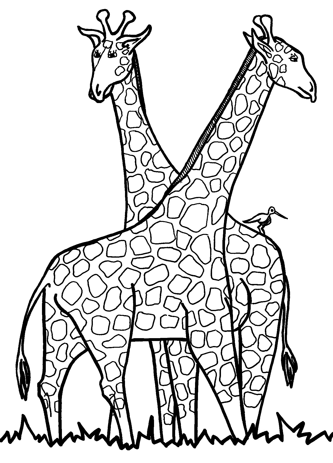 Uncategorized Giraffe Print Out printable giraffe coloring pages me free printable