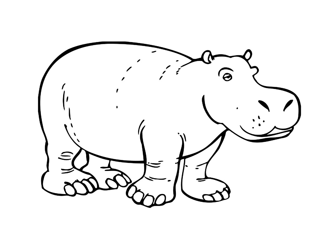 hippopotamus coloring pages to print - photo#5