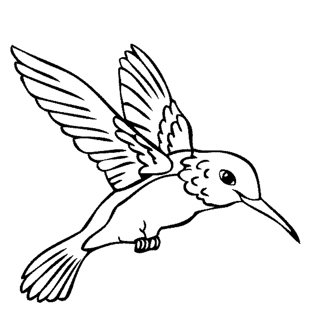 coloring book bird pages - photo#28