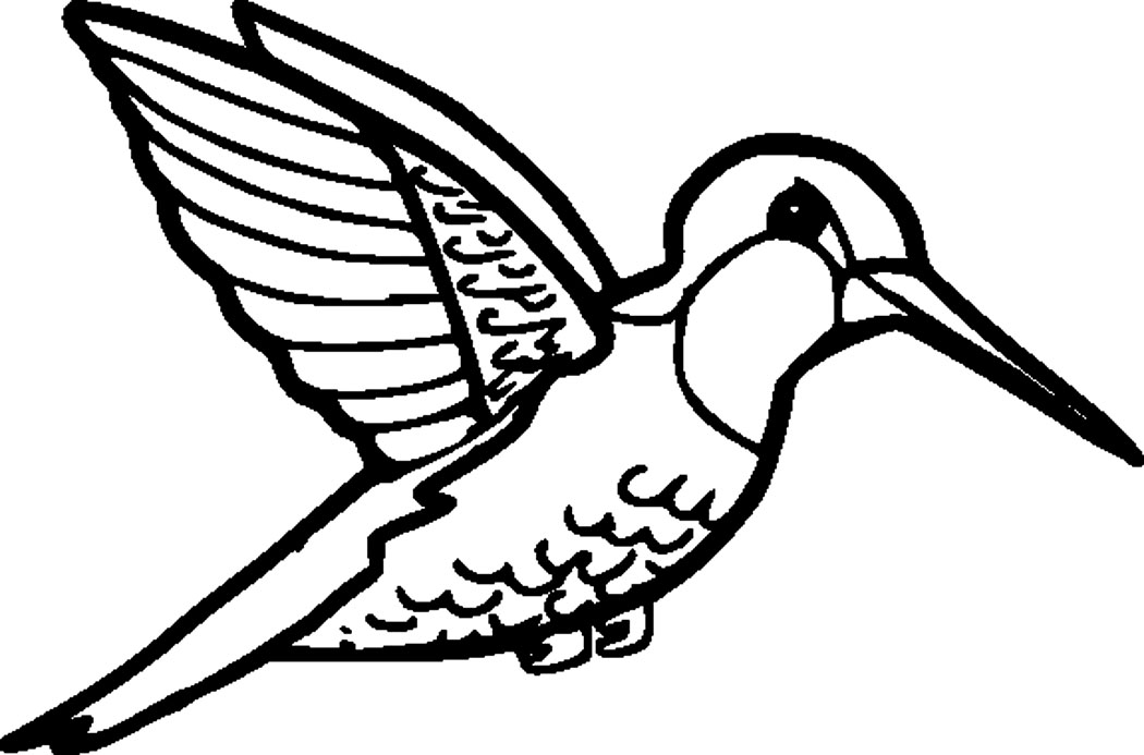 Printable Hummingbird Coloring Pages Coloring Me Hummingbird Coloring Pages