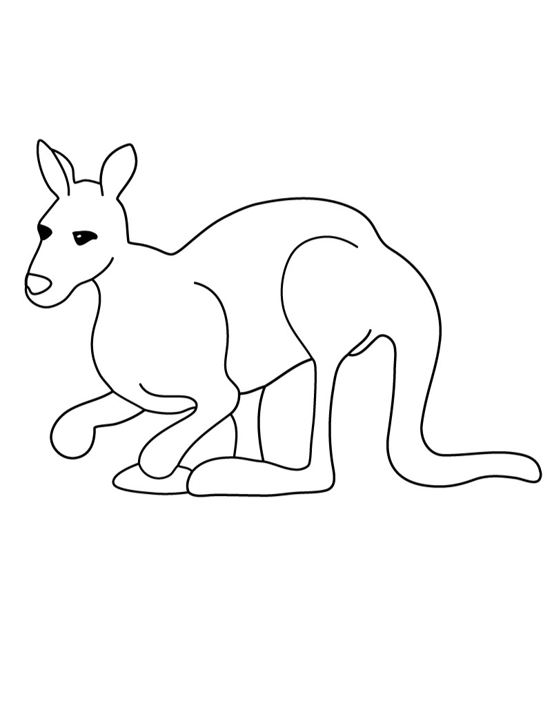 Kangaroo Printable Coloring Pages