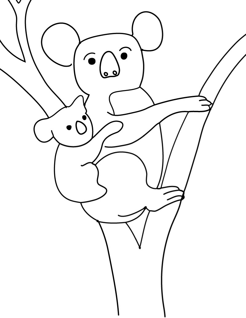 Printable coloring pages koala - Koala Coloring Sheets