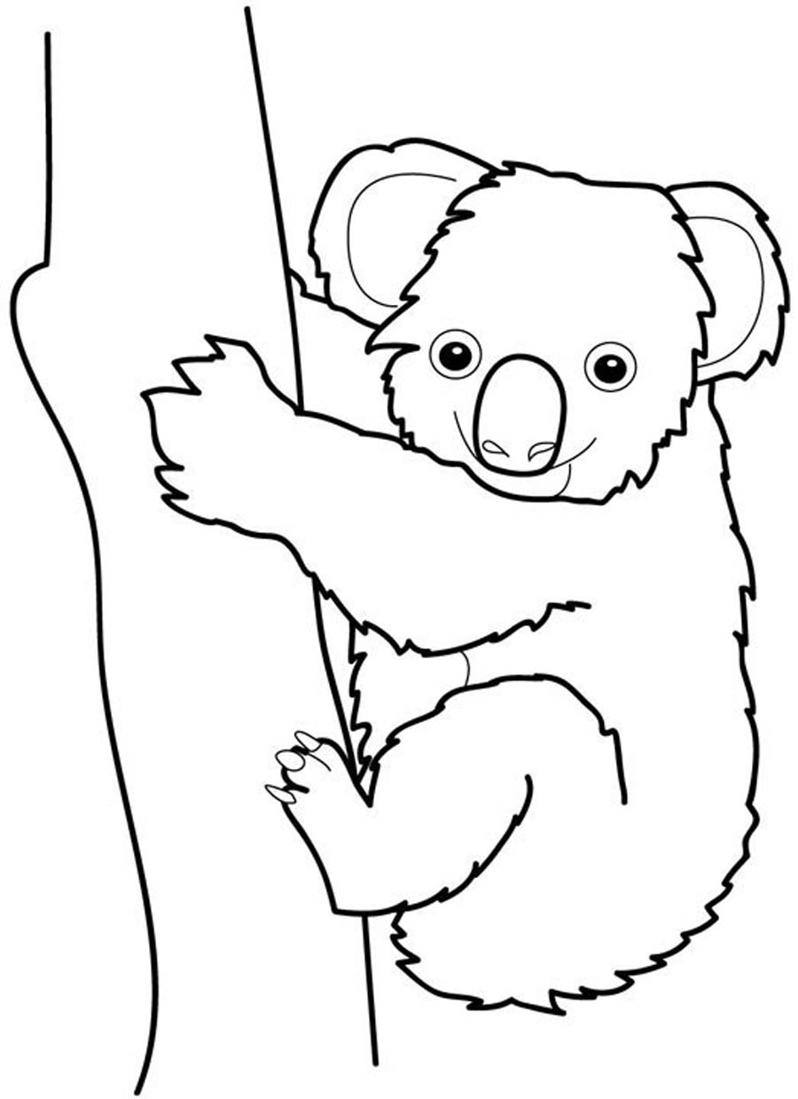 Koala coloring pages dragoart coloring pages for Koala coloring page