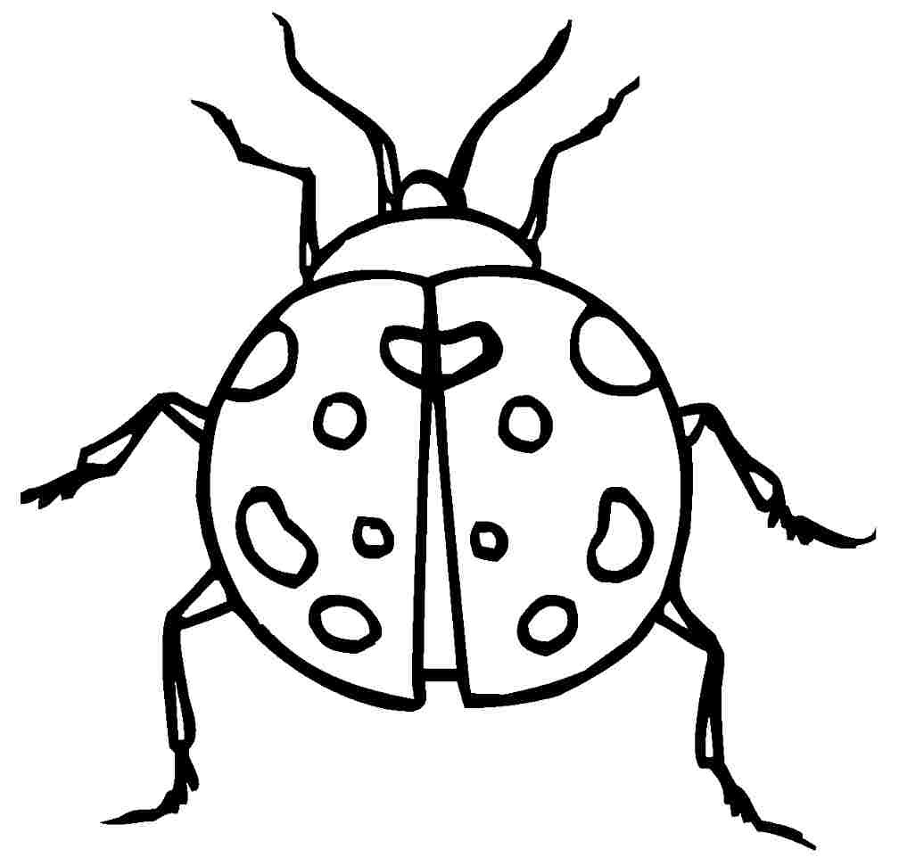 Coloring pages of ladybugs for kids - Ladybug Coloring Pages For Kids