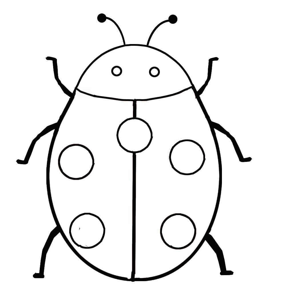 Ladybug coloring pages print
