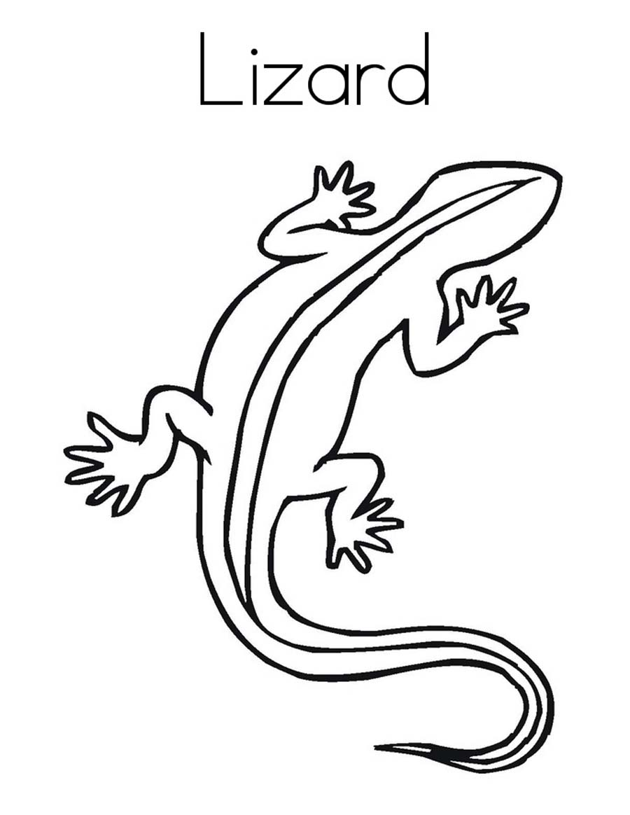 Lizards coloring pages to print - Lizard Coloring Sheets