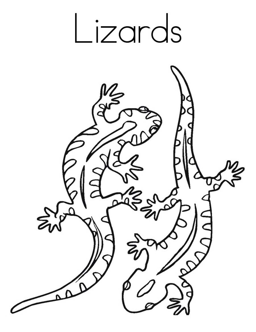 cartoon lizard coloring pages - photo#19